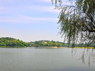 台南虎头埤风景区.(摄影/邱伟诚)